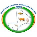 Logo AMEN Mission-1